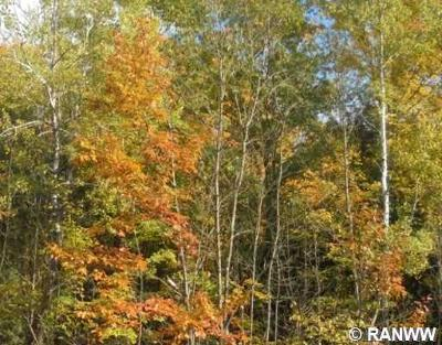 Birchwood WI Residential Lots & Land For Sale: $193,500
