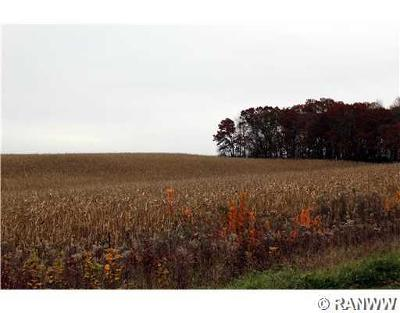 Jackson County, Clark County, Trempealeau County, Buffalo County, Monroe County, Chippewa County, Eau Claire County Residential Lots & Land For Sale: Walnut Road