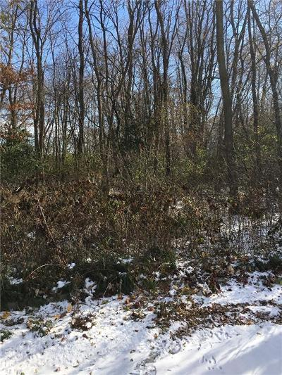 Rice Lake Residential Lots & Land For Sale: 810 E Gates Street