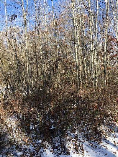 Rice Lake Residential Lots & Land For Sale: 1021 Soo Boulevard