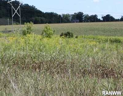 Residential Lots & Land Sold: Lot 5 429th Ave (Southview Meadows)