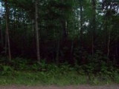 Rice Lake WI Residential Lots & Land For Sale: $24,900