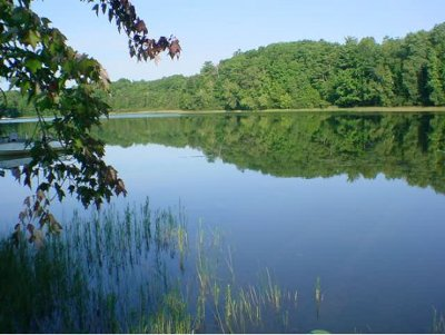 Suring Residential Lots & Land Active-No Offer: N Kelly Lake