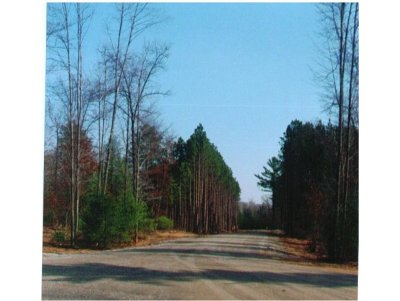 Residential Lots & Land Active-No Offer: Pine Ridge