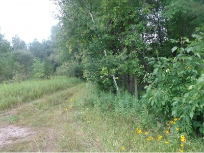 Shawano County Residential Lots & Land Active-No Offer: 1342 E Green Bay