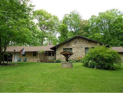 Single Family Home For Sale: 11280 Gillett Town Hall Rd