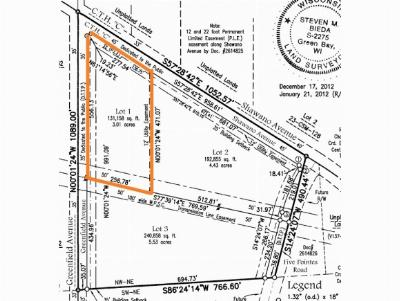 Green Bay Residential Lots & Land Active-No Offer: Shawano