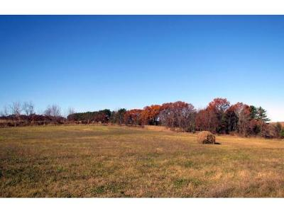 Residential Lots & Land Active-No Offer: Hwy O