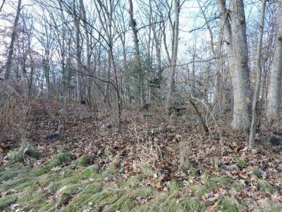 Waupaca Residential Lots & Land Active-No Offer: 923 Honey Bear Ln