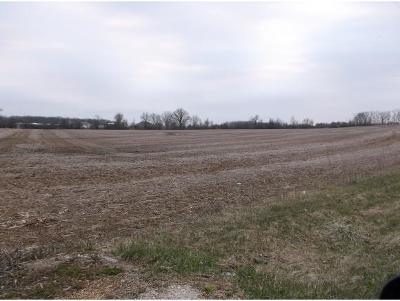 Residential Lots & Land Active-No Offer: Hwy N