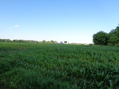 Residential Lots & Land Active-No Offer: 6442 Old Wisconsin 29