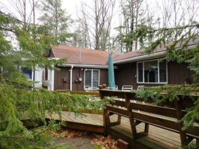 Lakewood Single Family Home Active-No Offer: 14440 Cottontail