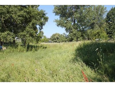 Residential Lots & Land Active-No Offer: Laveau