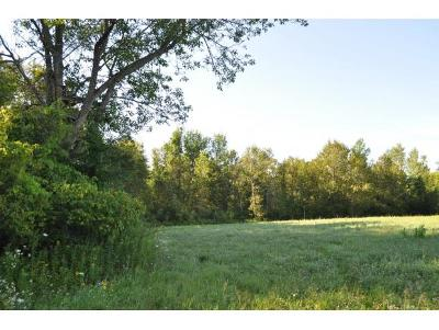 Residential Lots & Land For Sale: Pioneer