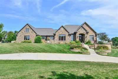 Appleton Single Family Home For Sale: 4198 N Honeywood