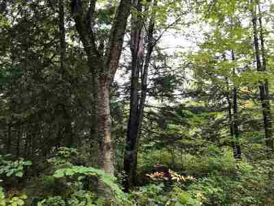 Residential Lots & Land For Sale: Wayfaring