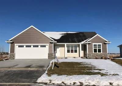 Homes For Sale In Appleton Wi 200 000 To 300 000