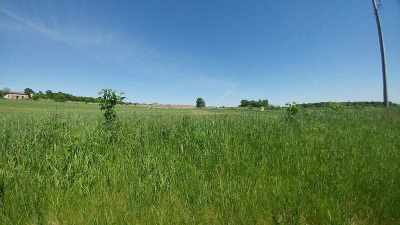 Shiocton WI Residential Lots & Land Active-No Offer: $39,900