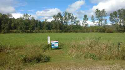 Residential Lots & Land Active-No Offer: T Berg