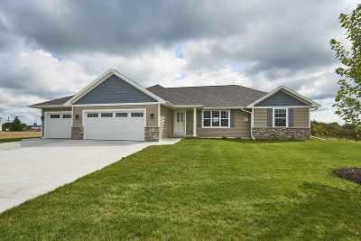 Pulaski Single Family Home Active-No Offer: 1246 Mountain Bay