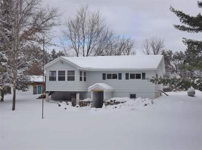 Single Family Home For Sale: 10302 Big Eddie