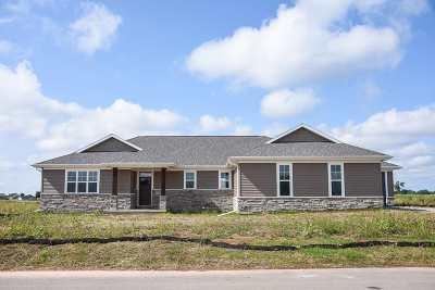 Appleton Single Family Home For Sale: 5493 N Amethyst