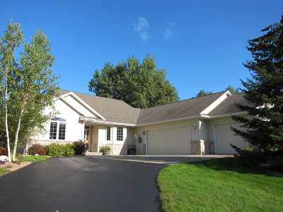 Appleton Single Family Home For Sale: W3784 Willow Brook