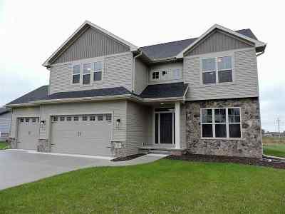 Appleton Single Family Home For Sale: 5384 N Amethyst