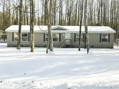 Pound Single Family Home For Sale: 9277 Forest Trail