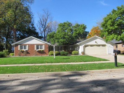 Kaukauna Single Family Home For Sale: 209 Hayes