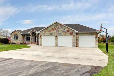 Menasha Single Family Home For Sale: N7484 Hwy 114
