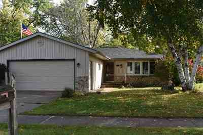 Appleton Single Family Home For Sale: 808 S Schaefer