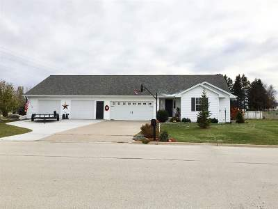 Oconto Falls Single Family Home For Sale: 920 Robin