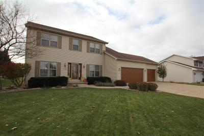 Appleton Single Family Home For Sale: 1221 W Woodstone