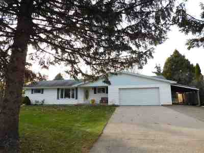 Neenah Single Family Home For Sale: 620 Irish