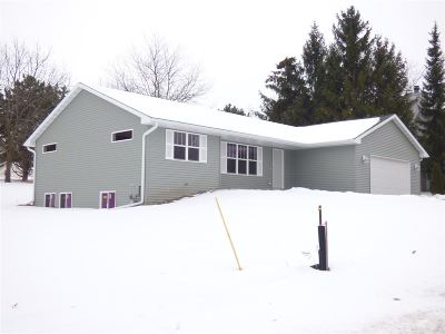 Green Bay Single Family Home For Sale: 349 Alpine