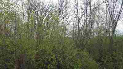 Kaukauna WI Residential Lots & Land Active-No Offer: $39,900