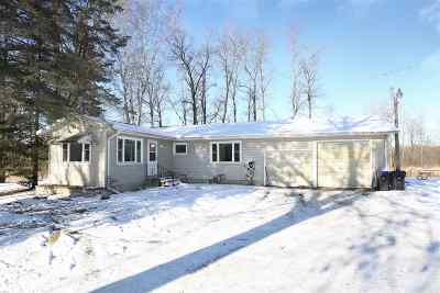 Shawano Single Family Home For Sale: N5805 Edgewood
