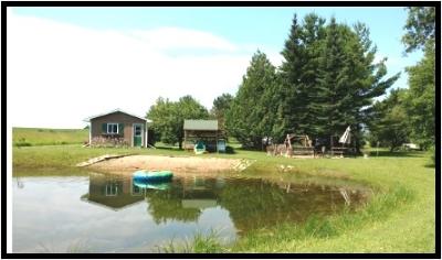 Single Family Home For Sale: 8184 Yashinsky
