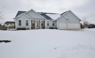De Pere Single Family Home For Sale: 1389 Crystal Rock