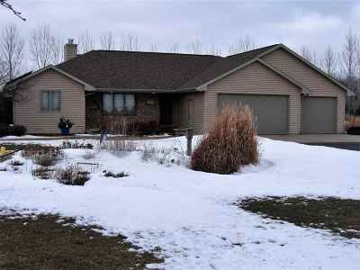 Oconto Falls WI Single Family Home For Sale: $274,900