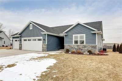 Appleton Single Family Home For Sale: 3920 E Braeburn