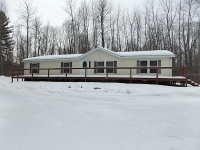 Oconto County Single Family Home Active-No Offer: 12965 Sheep Ranch