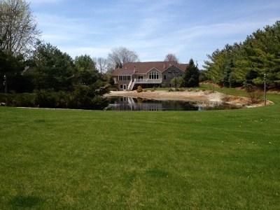 Appleton Single Family Home For Sale: 4928 N Meade