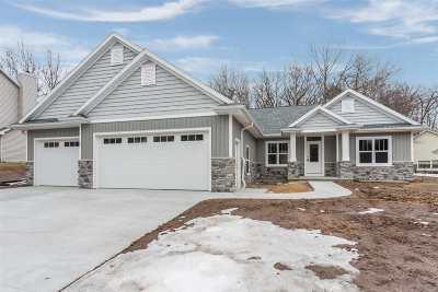 Green Bay Single Family Home Active-Offer No Bump: 355 Heidelberg