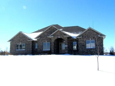 Appleton Single Family Home For Sale: 5277 W Century Farm