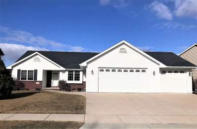 Appleton Single Family Home For Sale: 4126 E Appleview