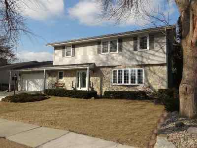 Single Family Home For Sale: 508 Wettstein
