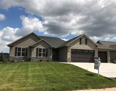 Appleton Single Family Home Active-No Offer: 3641 Tulip