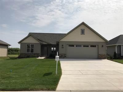 Appleton Single Family Home For Sale: 3633 Tulip